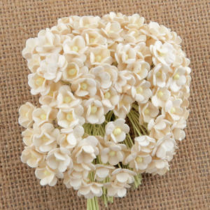 100 Miniature Sweetheart Blossom - Ivory